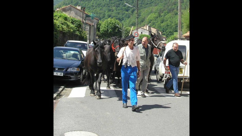 transhumance in Couflens